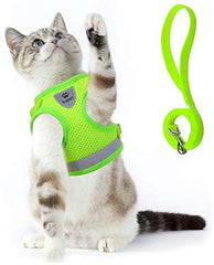 Cat Harness and Leash Set for Walking Cat and Small Dog Harness - Mia's Pet Supply