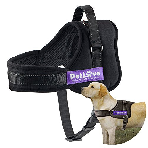 : Soft Leash Padded No Pull Dog Harness with All Kinds of Size (XXX Small, Black) - Mia's Pet Supply