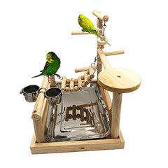 Parrots Playstand Bird Playground Wood Perch Gym - Mia's Pet Supply