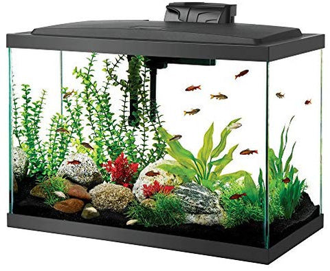 Aqueon Aquarium Fish Tank Kit, 20 gallon : Pet Supplies - Mia's Pet Supply