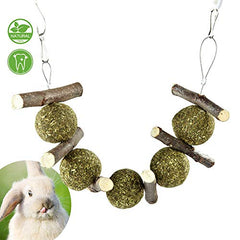 : PETLAOO Bunny Chew Toys for Teeth, Improve Dental Health - - Mia's Pet Supply