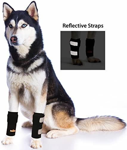 Pair of NeoAlly Dog Front Leg Braces Canine Carpal Support - Mia's Pet Supply
