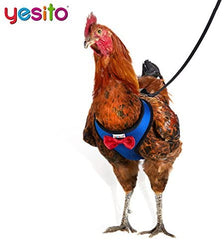 Yesito Chicken Harness Hen Size with 6ft Matching Leash - Mia's Pet Supply