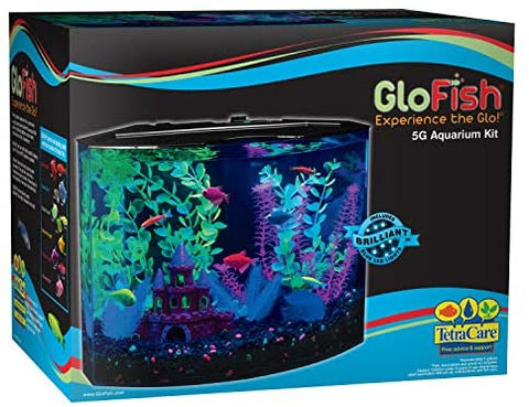 GloFish 20 Gallon Aquarium Kit with LED Lights, Decor Heater and Filter - Mia's Pet Supply