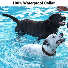 : Shock Collar for Dogs - IPX7 Waterproof Dog Shock Collar with IPX5 Water Resistant - Mia's Pet Supply