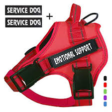 No-Pull Emotional Support Pet Vest Harness, Reflective Breathable and Adjustable - Mia's Pet Supply