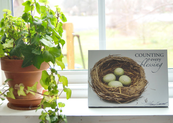 Nest - Ready to Hang Plaque