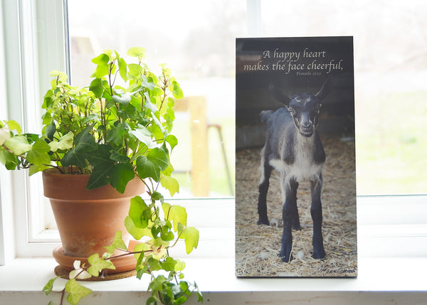 Cheerful Goat - Ready to Hang Plaque