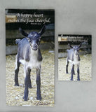 Cheerful Goat - Magnet and Deluxe Magnet