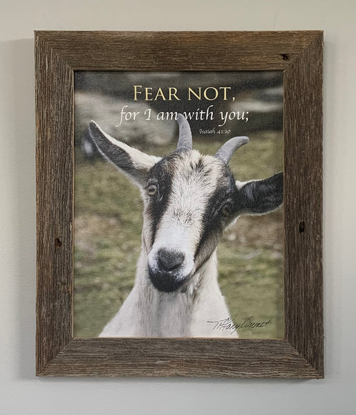 Fear Not - Canvas Framed in Barn Wood