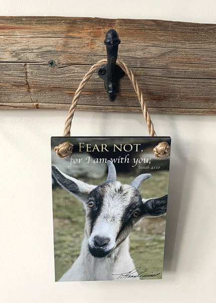 Fear Not - Ropes