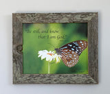 Be Still Butterfly - Canvas Framed in Barn Wood