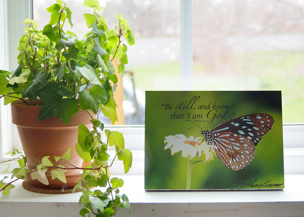 Be Still Butterfly - Ready to Hang Plaque