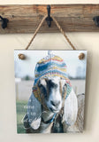 Maggie - Goat with Hat - Ropes