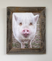 Beautiful Pig - Canvas Framed in Barn Wood