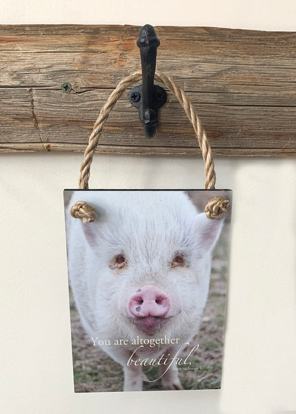 Overstock Beautiful Pig - Ropes