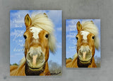 Joyful Horse - Magnet and Deluxe Magnet