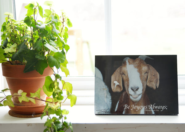 The Happy Goat - Ready to Hang Plaque