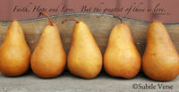 Pears - Ready to Hang Plaque