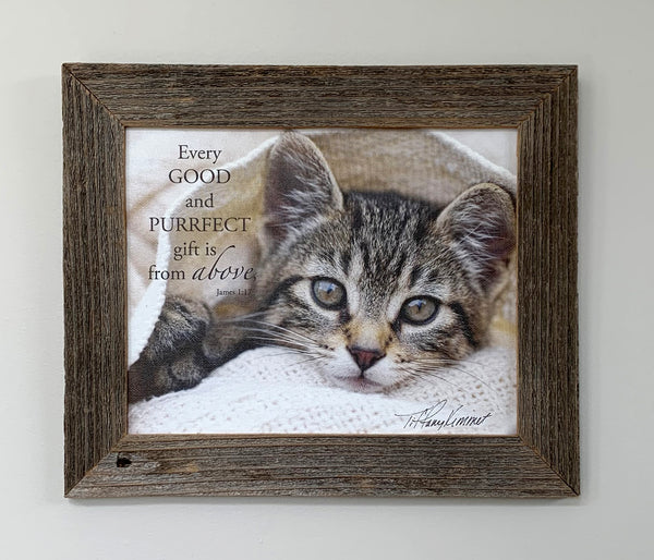 Frankie - Canvas Framed in Barn Wood