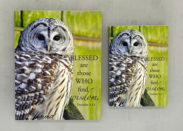 Wise Owl - Magnet and Deluxe Magnet