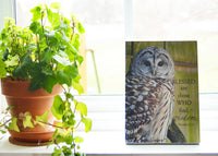 Wise Owl - Ready to Hang Plaque