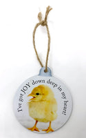 Baby Chick Ornament