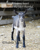 Cheerful Goat - Prints