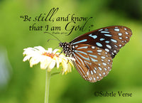 Be Still Butterfly - Magnet and Deluxe Magnet