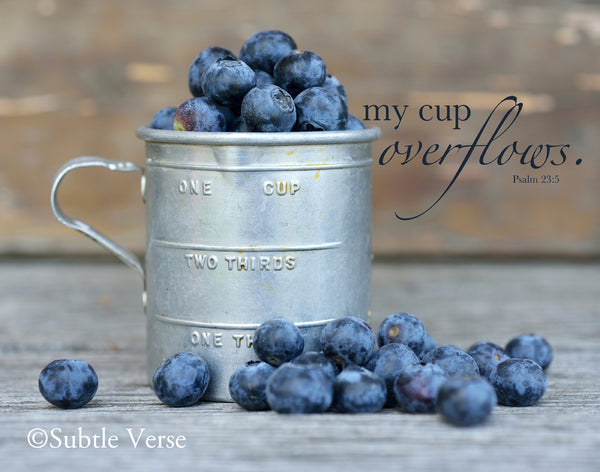 Cup of Blueberries - Prints