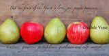 Fruit of the Spirit - Ropes