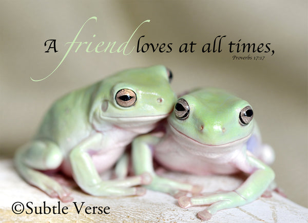 Frog Friends - Prints