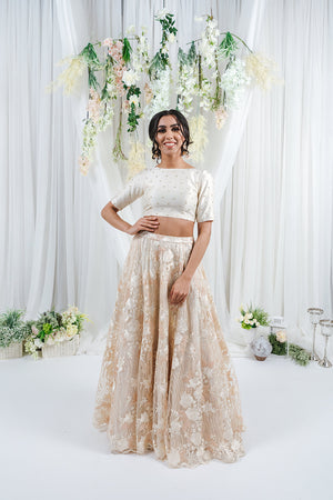 lehenga skirt with embroidery for indian wedding