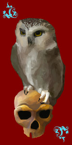 "Specter - Owl and Skull Art Poster 16 x 32"" Poster Satin"