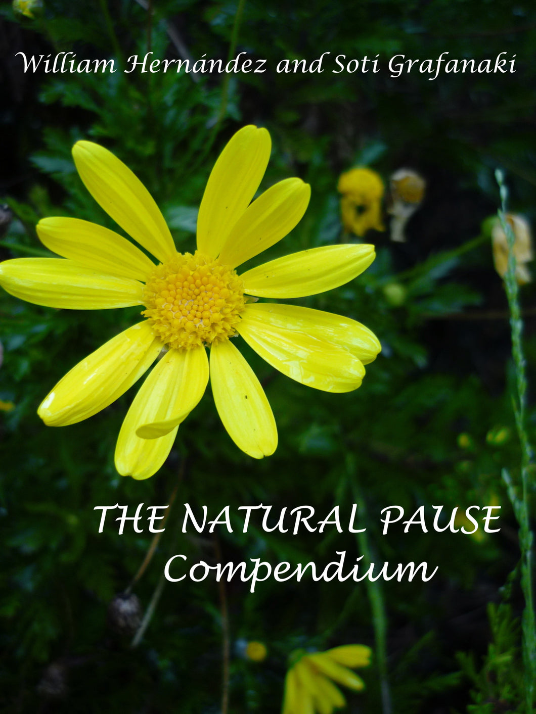 The Natural Pause -  Compendium (Pocket Book Electronic Format)