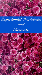 Experiential Workshops and Retreats (Available on request)