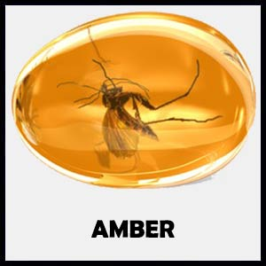 Amber Stone Information