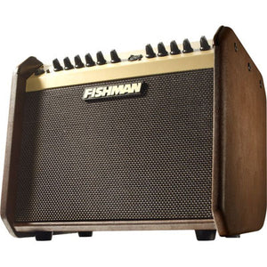 Fishman Loudbox Mini PRO-LBX-500 Acoustic Guitar Amplifier