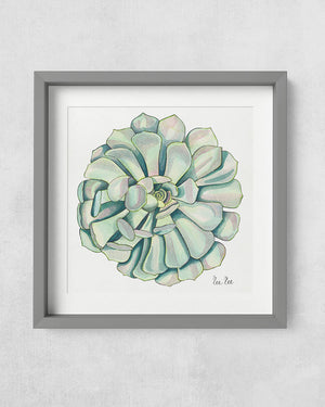 Watercolor illustration of succulent in soft teal colors and ink pen details in square art print.