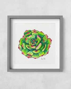 Succulent Red Tips Art Print