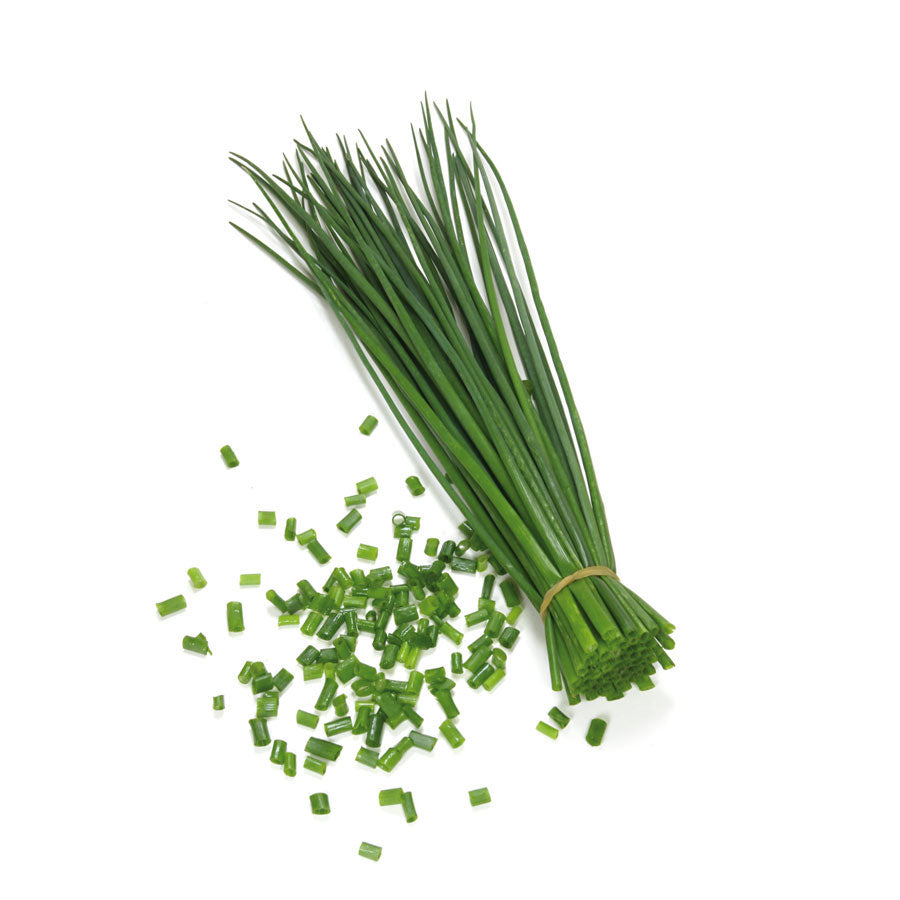Cebollin Chives