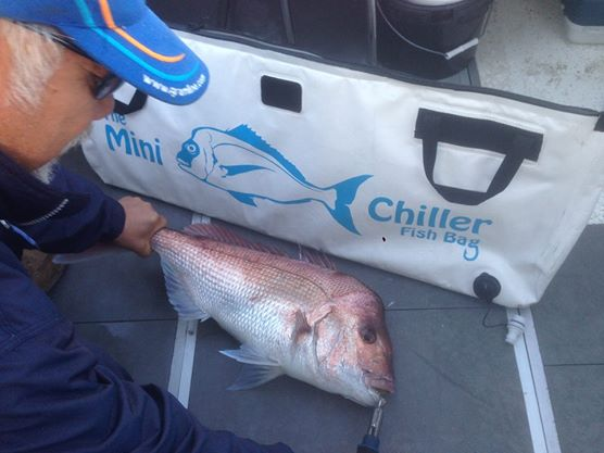 Chiller Fish Bags One Breath Diving Spearfishing