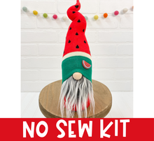 Load image into Gallery viewer, DIY Red Watermelon Gnome Kit - NO SEW - 1013