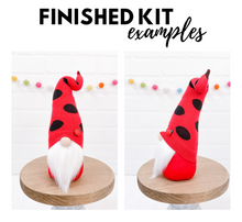 Load image into Gallery viewer, LAST CHANCE - DIY Lady Bug Gnome Kit - NO SEW - 1012