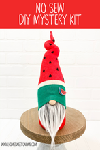 Load image into Gallery viewer, DIY Watermelon Gnome Making Kit - NO SEW KIT