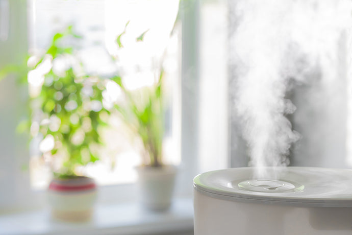 Comparing Home Humidifiers. Which One's Right For Me?