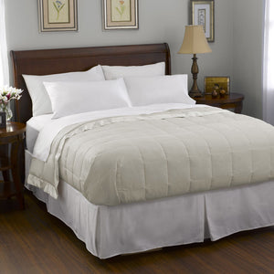 Pacific Coast® Down Blanket - Cream