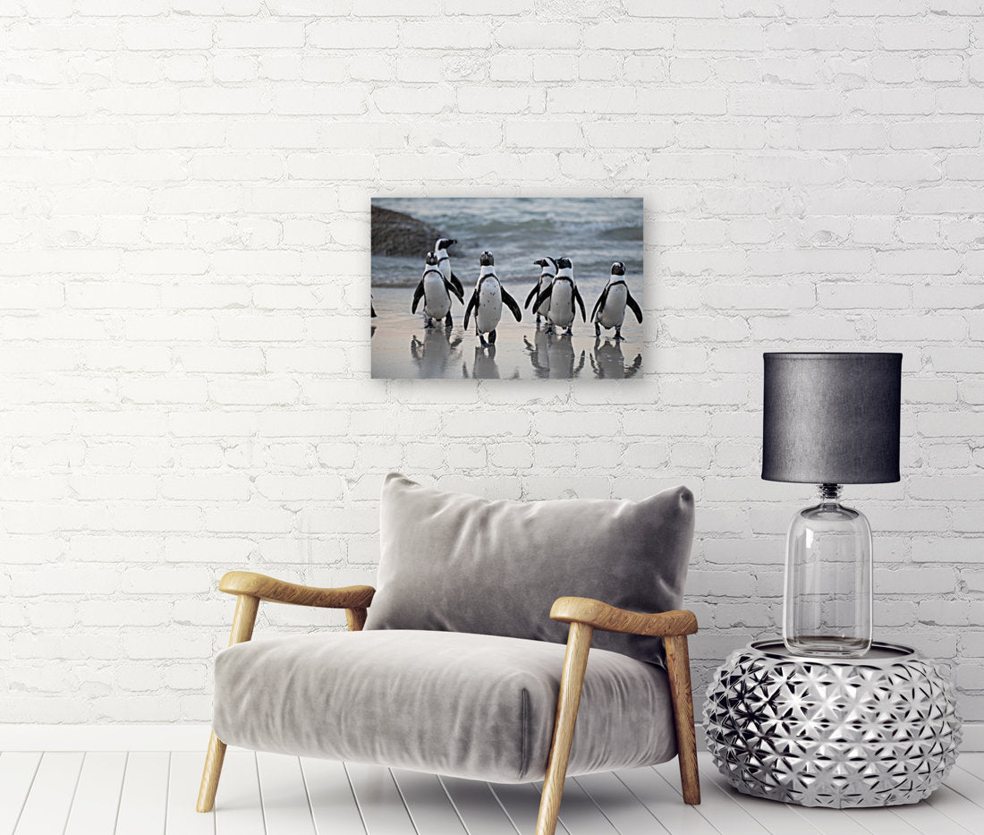 Penguin Canvas Wrap