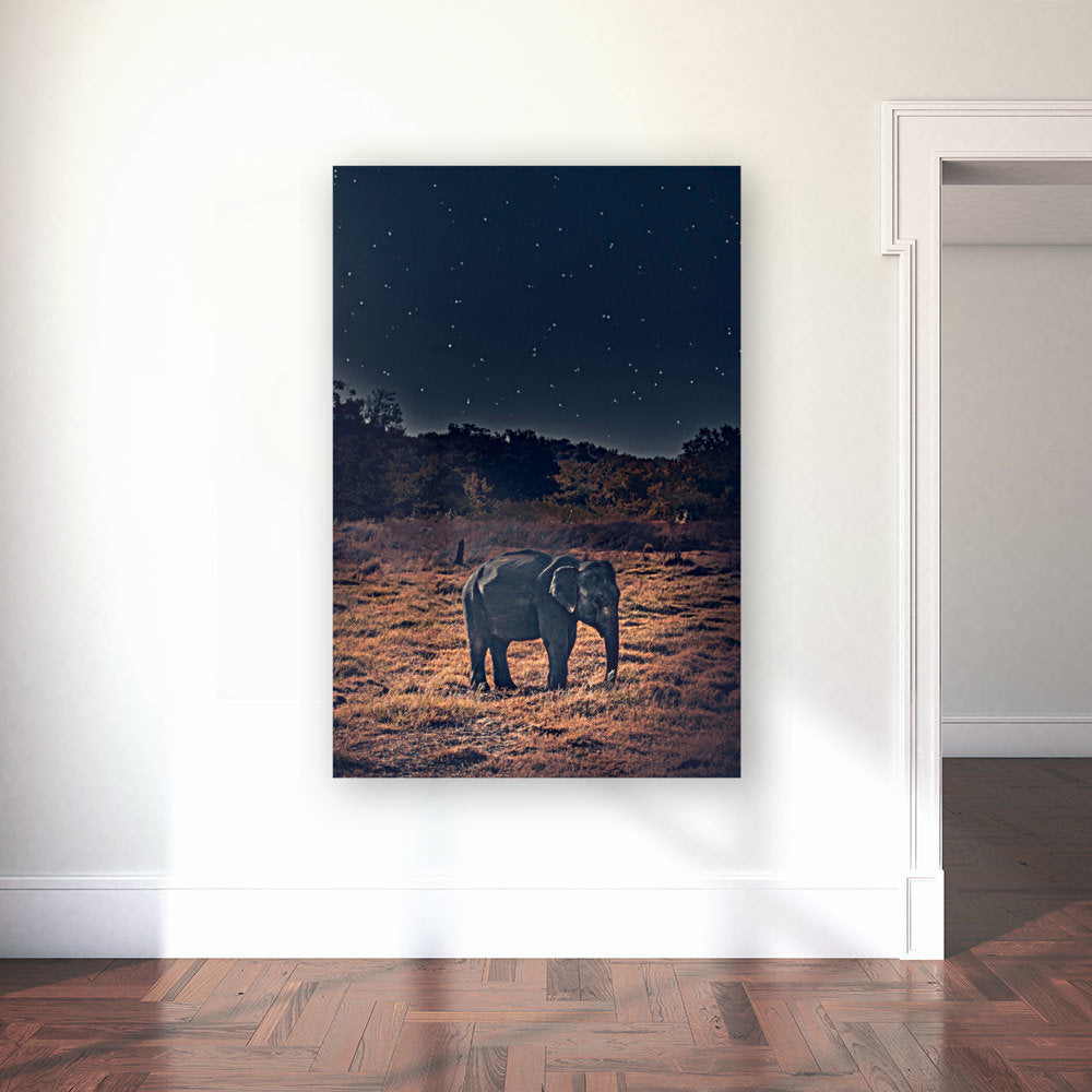 Lone Elephant Canvas Wrap