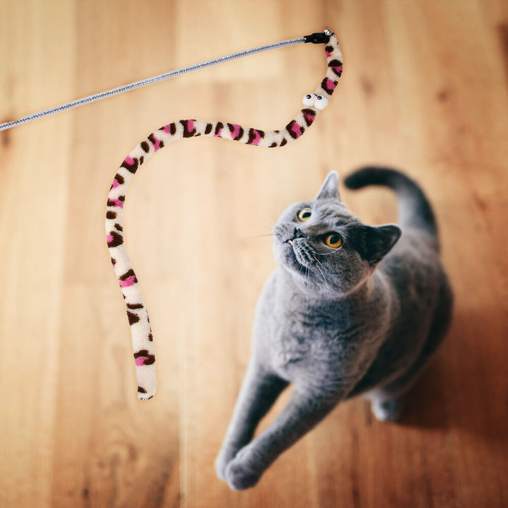 Grey cat playing with a worm toy on a wand, available for affordable pricing at Felini Cat Shop